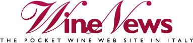 WineNews racconta il Gattinara Travaglini Tre Vigne 2006